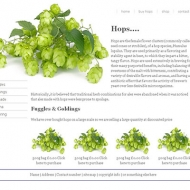 leisure_site_example_one